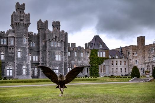 2016-Ireland-04-Ashford-Castle_20-1