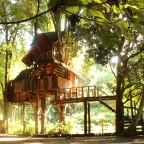 TREEHOUSE DREAM :)